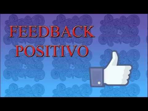 Homeostásis y Procesos de Retroalimentación (Feedback)