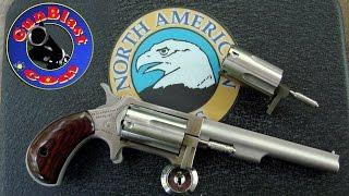 "North American Arms ""Sidewinder"" 22 Revolver with 4"" Barrel - Gunblast.com"