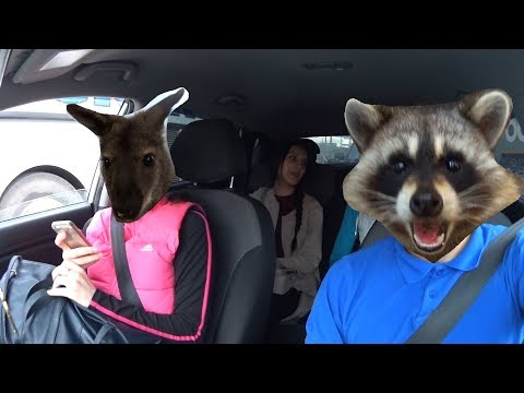 ВЛОГ #2 Одноклассник на BMW, Контактный зоопарк, Фотосессия,  Выписка из роддома.