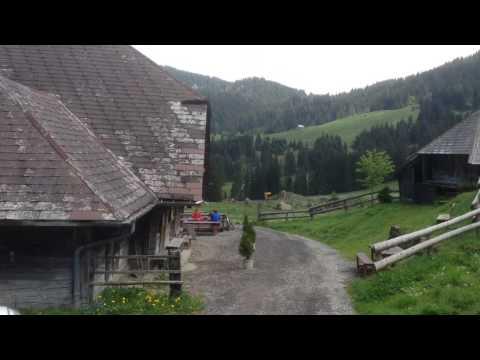 Alpwirtschaft Stäfeli