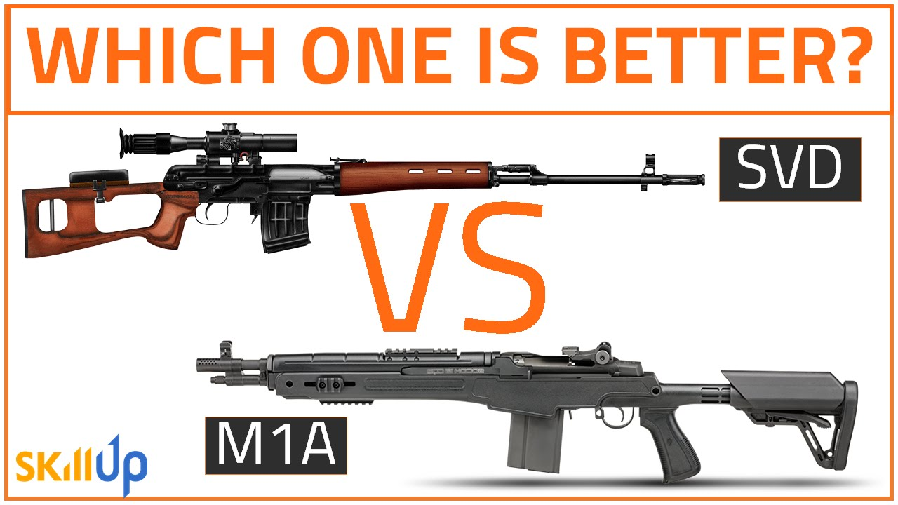 The Division | SVD vs M1A- Which One Is Better? (Full SVD Review, and How  to mod an SVD)