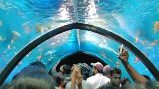 Oceanos expo 2019...under water tunnel acquarium..Thrissur by Niel entertainment...