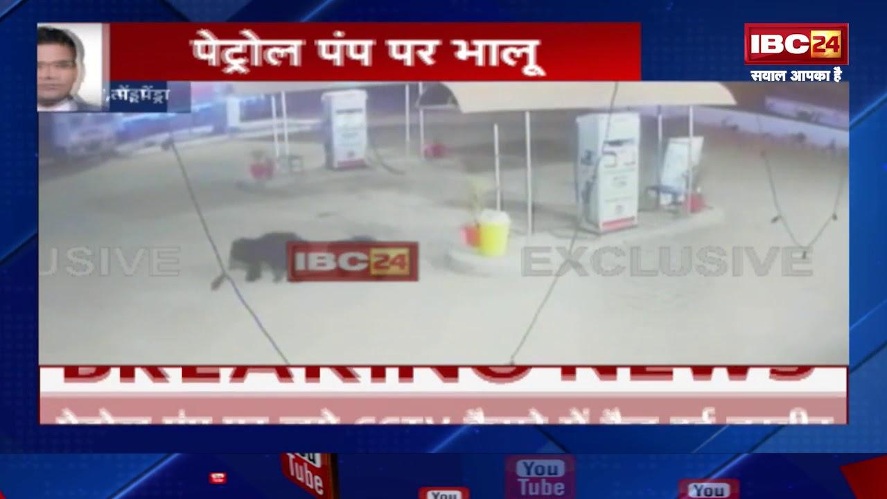 Pendra CG: Petrol Pump Me Bhalu (पेट्रोल पंप में भालू)