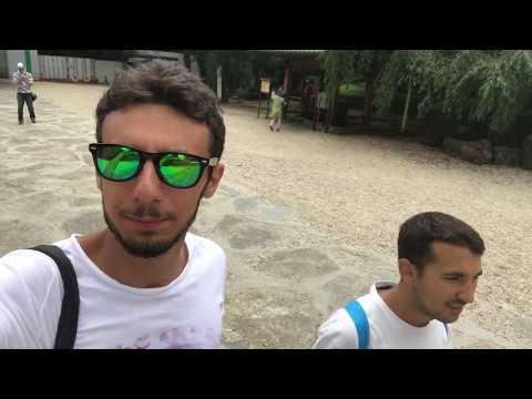Tokyo Vlog - Minato-ku, Shinjuku, Harajuku,Meiji Jingu - Two Italian Guys In Japan - Tsuka Vlog 013