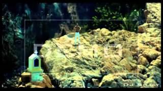 Whistle (flo -rida )-Dj SujaY Promo Remix
