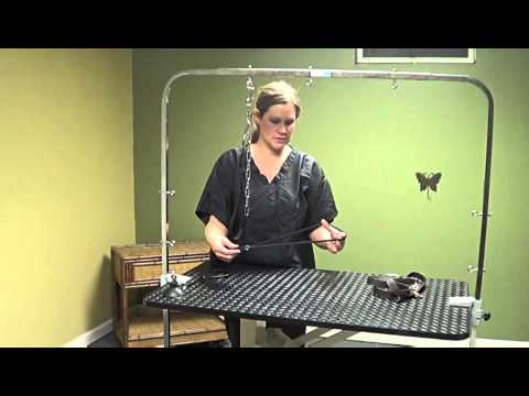 Dog Grooming Tables and Straps for the Do-It-Yourself Dog Groomer