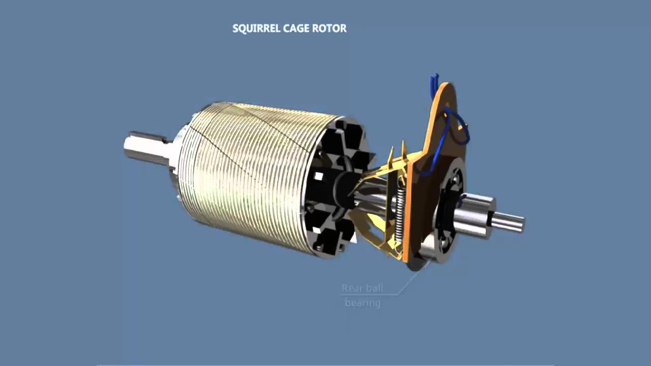 Construction of Single Phase Induction Motor - YouTube