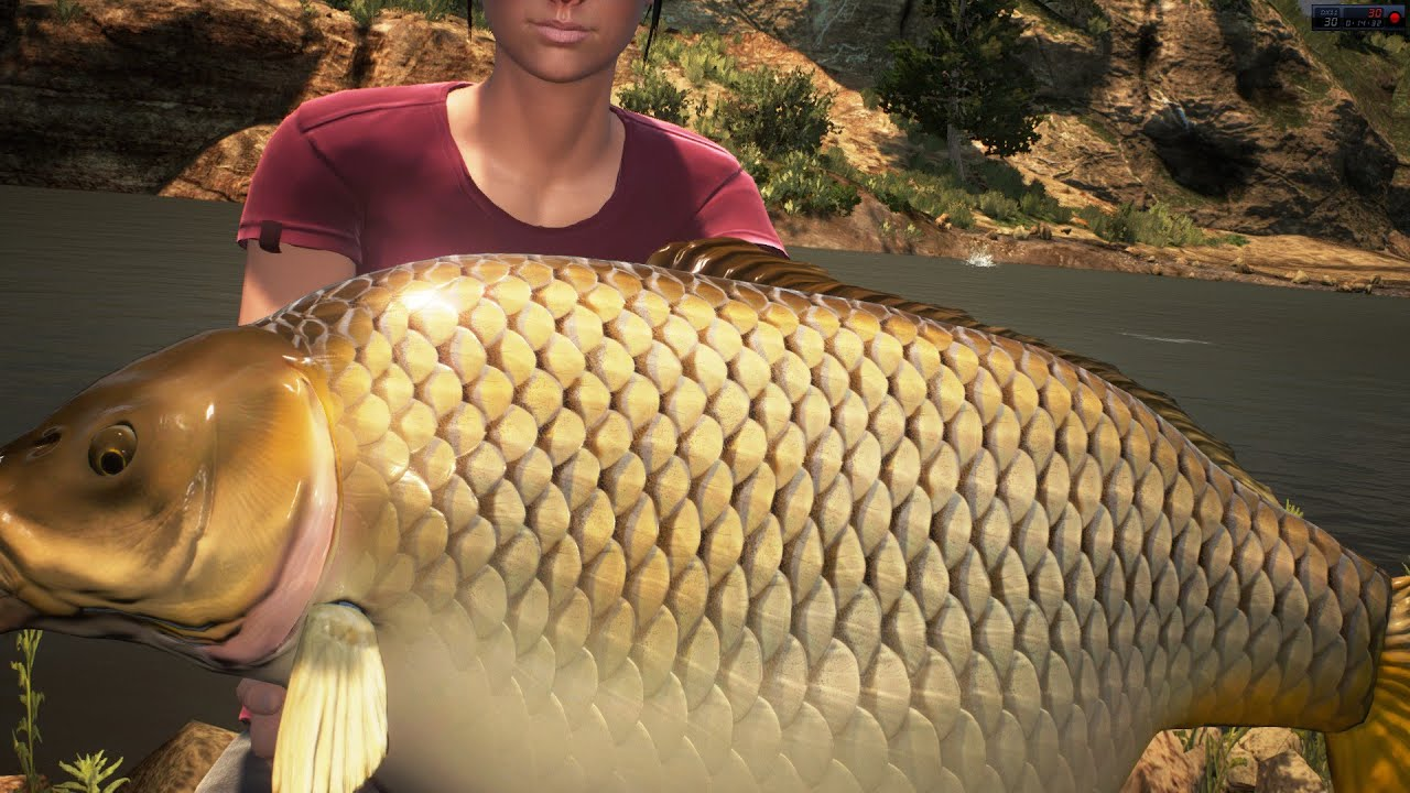Dovetail games euro fishing big carp 17 17 19kg youtube for Dovetail games fishing