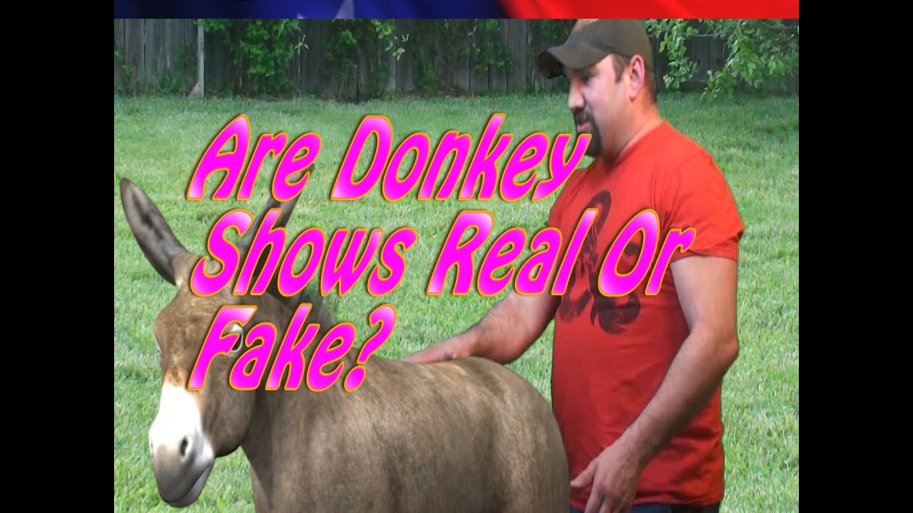 Actual donkey show video with woman