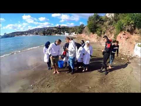 Sortie pédagogique biologie marine 2017