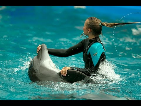 Дельфинарий НЕМО Одесса 18.08.2016 Dolphinarium NEMO Odessa