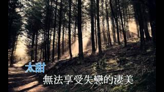 許廷鏗-螞蟻KTV字幕版(並非ktv版) 【BANANA816】