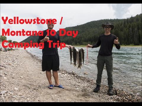 Yellowstone and Grand Teton National Parks June 2015
