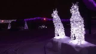 Световое новогоднее шоу в Барнаульском зоопарке