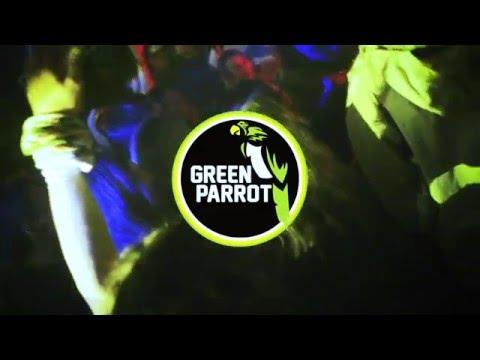 Green Parrot Winter Break 2016