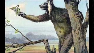 BigFoot 2017 - Melba Ketchum: Bigfoot is part human and part lemur