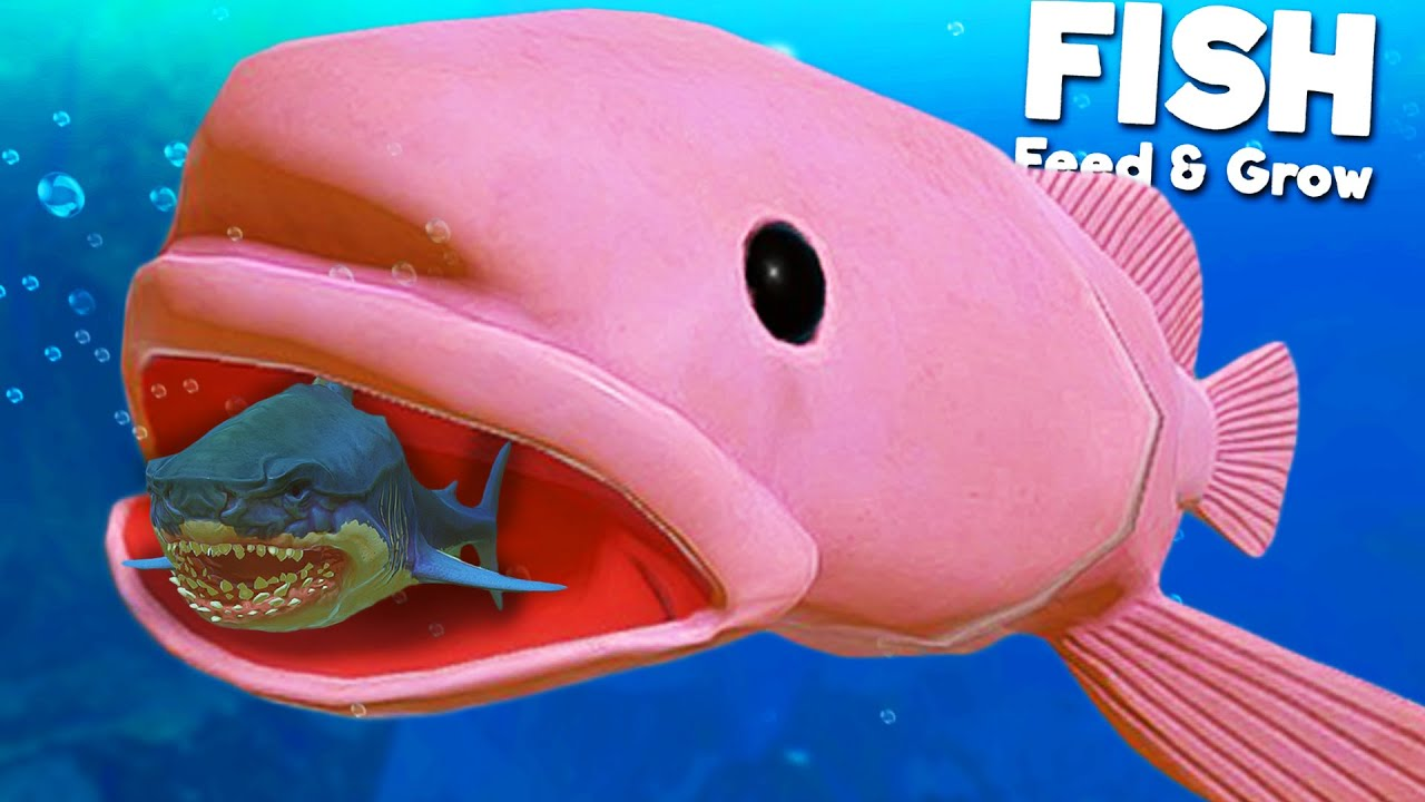 Ugly BLOBFISH vs Prehistoric Megalodon?! | Feed and Grow Fish