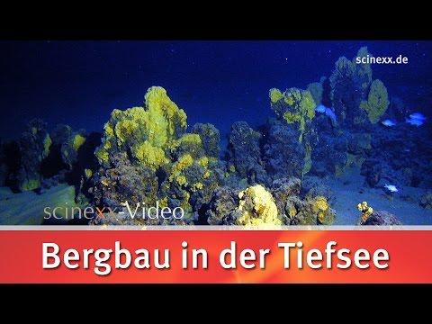 Bergbau in der Tiefsee // scinexx.de