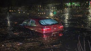 В Киеве Renault слетел с дороги и упал в Русановский канал