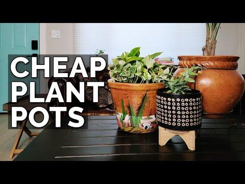 Cheap Plant Pots: Walmart vs. Target vs. Marshalls vs. Consignment Stores!