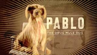 CRINGIEST ANTI-DRUG ADVERTISEMENTS