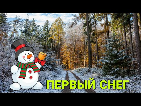 Первый Снег и Метель,Ереван 2020. Yerevan,Armenia.