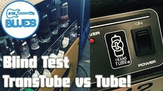 Real Tubes versus Peavey TransTube Blind Test
