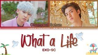 Gambar Exo-sc - What A Life Lyrics Color Coded  Han/rom/eng