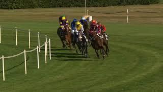 Vidéo de la course PMU PRIX DE LA GRANDE GRILLE
