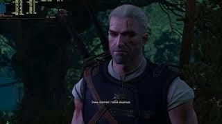 The Witcher 3 - угарный момент (нет)
