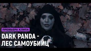 DARK PANDA - ЛЕС САМОУБИЙЦ (премьера клипа, 2017)