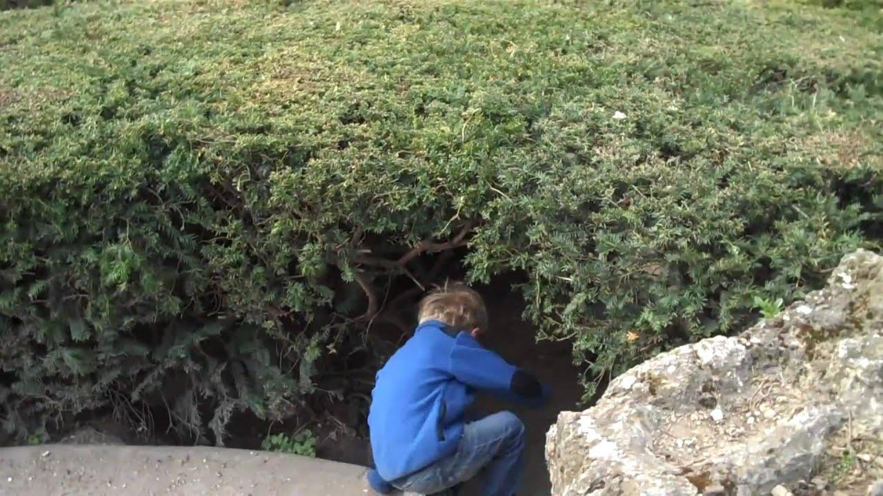 Paris with Kids - Jardin des Plantes Labyrinthe - YouTube