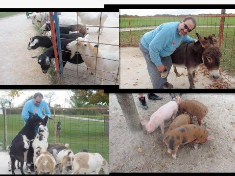 Green Meadows Petting Farm Wisconsin | 2015