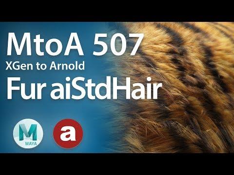 MtoA 507 | XGen Fur with aiStandardHair