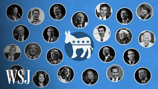 2020 Democratic Debates: How the Candidates Made the Cut   WSJ