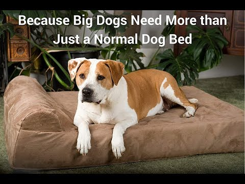 "big-barker-7""-pillow-top-orthopedic-dog-bed-for-large-and-extra-large-breed-dogs"