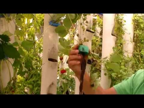Water Delivery System for Aquaponics Grow Towers Part 3