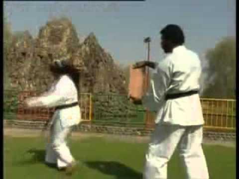 Golden Falcon Karate Centre- Dubai