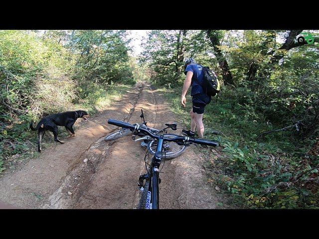 Aventuri pe bicicleta : pe Creasta Ghioroc - Paulis