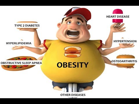 causes-of-obesity-or-fatness