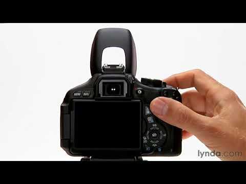 Canon Rebel overview: Using flash in auto mode | lynda.com