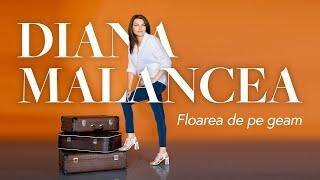 Descarca Diana Malancea - Floarea De Pe Geam (Original Radio Edit)