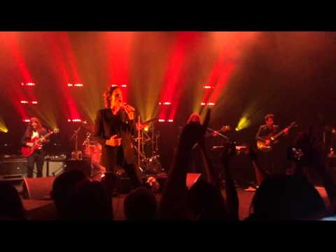 Brandon Flowers - Crossfire // Magdalena. (Live in London)