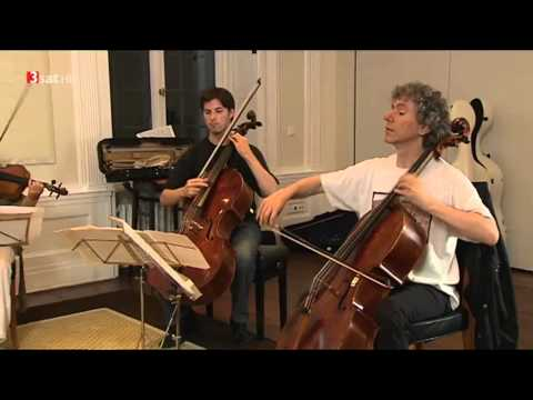 Daniel Mueller-Schott - ein German-Cellist stellt sich vor !