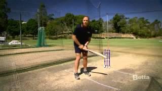 Keeping your eye on the Ball when Batting   Be a Betta Cricketer  Betta Home Living