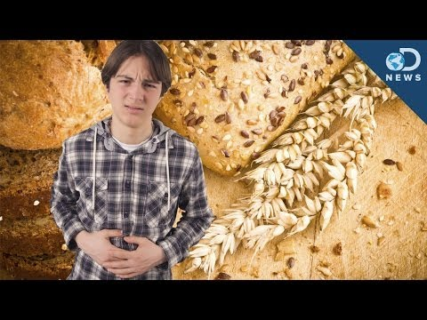 Is Non-Celiac Gluten Sensitivity Real