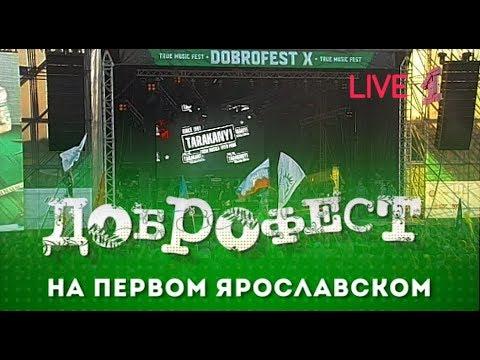 """""""Тараканы!"""" - Live Доброфест - 2019 (""""Первый Ярославский"""")"""
