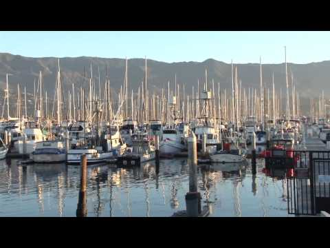 """Local sustainable Seafood Santa Barbara: """"Catch of the Week"""""""