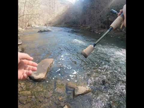 Trout Fishing Dan River Virginia