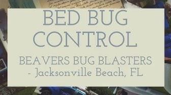 BED BUG CONTROL - Beavers Bug Blasters - Jacksonville Beach, FL
